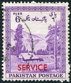 PAKISTAN - CIRCA 1954: A stamp printed in the Pakistan, is dedicated to the 7 th anniversary of Independence depicts the valley Kagan, District Hazara (Stamp Service — Foto Stock