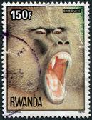 RWANDA - CIRCA 1978: A stamp printed in the Rwanda — Fotografia Stock
