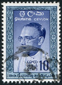 CEYLON - CIRCA 1960: A stamp printed in the Ceylon, shows Prime Minister Bandaranaike, circa 1960 — Stock Photo