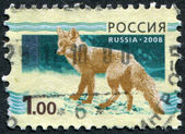 RUSSIAN-CIRCA 2008: A stamp printed in the Russian Federation — Stok fotoğraf