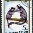 NORTH KOREA - CIRCA 1985: A stamp printed in North Korea - Stock Photo