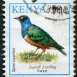 Stock Photo: KENY- CIRC1993: Postage stamps printed in Kenya, shows bird Superb Starling