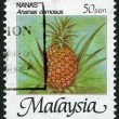 Stock Photo: MALAYSI- CIRC1986: Postage stamps printed in Malaysia, is depicted Pineapple (Ananas comosus), circ1986