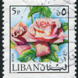 LEBANON - CIRCA 1973: Postage stamps printed in Lebanon, depicts the flower rose, circa 1973 - Stock Photo
