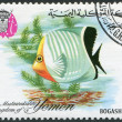 KINGDOM OF YEMEN - CIRCA 1967: A stamp printed in the Kingdom of Yemen, shows Tropical Fish Butterflyfish, circa 1967 - Stock Photo