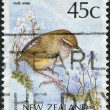 Stock Photo: NEW ZEALAND - CIRC1991: stamp printed in New Zealand, shows bird New Zealand Rockwren (Xenicus gilviventris), circ1991
