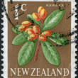 NEW ZEALAND - CIRCA 1970: A stamp printed in New Zealand, shows the insect Lichen Moth (Declana egregia), circa 1970 — Stock Photo #12427908