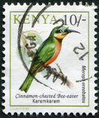 KENYA - CIRCA 1993: Postage stamps printed in Kenya, shows a bird the Superb Starling — Stock Photo