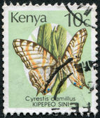 KENYA - CIRCA 1988: Postage stamps printed in Kenya, shows the butterfly the African Map Butterfly (Cyrestis camillus), circa 1988 — Stock Photo
