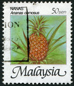 MALAYSIA - CIRCA 1986: Postage stamps printed in Malaysia, is depicted Pineapple (Ananas comosus), circa 1986 — Stock Photo