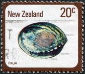 NEW ZEALAND - CIRCA 1978: A stamp printed in New Zealand, shows the molluscs Paua (Haliotis Iris), circa 1978 — Stock Photo
