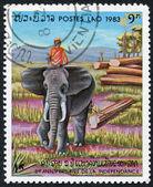 LAOS-CIRCA 1983: A stamp printed in the Laos — Stock Photo