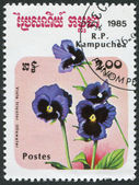 KAMPUCHEA-CIRCA 1985: A stamp printed in the Cambodia, depicts a flower Viola tricolor — Stock Photo