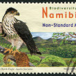 NAMIBIA - CIRCA 2007: Postage stamps printed in Namibia, represented African Hawk-Eagle (Aquila fasciatus), circa 2007 - Stock Photo