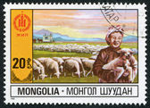 MONGOLIA-CIRCA 1981: A stamp printed in the Mongolia — Stock Photo
