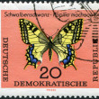 DDR - CIRCA 1964: A stamp printed in DDR, shows a Swallowtail butterfly, circa 1964 - Stock Photo