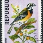 Постер, плакат: HAITI CIRCA 1969: A stamp printed in Haiti depicts a bird Spindalis dominicensis circa 1969
