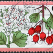 A stamp printed in the Germany, is shown Crataegus - Stock Photo