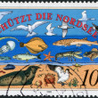 Stamp printed in Germany, dedicated to Nature and Environmental Protection, shows florand faunof North Sea — Stock Photo #12757707