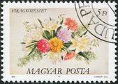 Ungheria - circa 1989: un timbro stampato in Ungheria, è raffigurato floreali, circa 1989 — Foto Stock