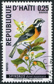 HAITI - CIRCA 1969: A stamp printed in Haiti, depicts a bird Spindalis dominicensis, circa 1969 — Stock Photo