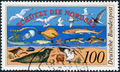 A stamp printed in the Germany, dedicated to Nature and Environmental Protection, shows the flora and fauna of the North Sea — Stock Photo
