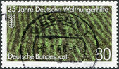 A stamp printed in Germany, is dedicated to the 25th anniversary of German Agro Action Organization, shows a rice field — Stock Photo