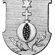 Coat of Arms Brothers Hospitallers of St. John of God. The Roman Catholic Church. Publication of the book &amp;quot;Meyers Konversations-Lexikon&amp;quot;, Volume 7, Leipzig, Germany,1910 - Stock Vector
