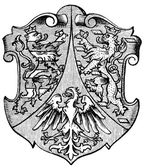 "Coat of Arms Hesse-Nassau, (Province of Kingdom of Prussia). Publication of the book ""Meyers Konversations-Lexikon"", Volume 7, Leipzig, Germany, 1910 — Vettoriale Stock"
