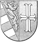 "Coat of arms of Gorizia and Gradisca, (Austro-Hungarian Monarchy). Publication of the book ""Meyers Konversations-Lexikon"", Volume 7, Leipzig, Germany, 1910 — Stock Vector"