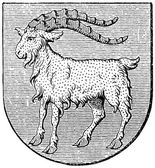 "Coat of arms of Istria, (Austro-Hungarian Monarchy). Publication of the book ""Meyers Konversations-Lexikon"", Volume 7, Leipzig, Germany, 1910 — Stock Vector"