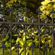 Forged fences - Stock Photo