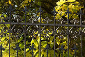 Forged fences — Stock Photo