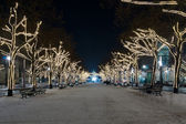 Unter den Linden before Christmas — Stock Photo