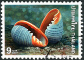 Tailândia - circa 1997: selo postal impresso na tailândia, mostra — Fotografia Stock