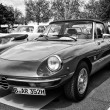 Roadster Alfa Romeo Spider — Stock Photo