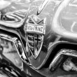 Radiator (engine cooling) and the emblem of the car NSU Sportprinz (Black and White) — Zdjęcie stockowe