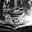 Постер, плакат: Radiator engine cooling and the emblem of Bugatti