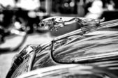 The symbol car Jaguar (Black and White) — Foto Stock