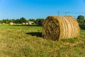 Haystacks at sunset. — Stock Photo