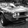 Постер, плакат: Car Pontiac Firebird black and white