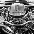 Постер, плакат: Engine Ford Shelby Mustang GT500 Eleanor black and white
