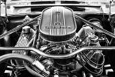 Engine Ford Shelby Mustang GT500 Eleanor (black and white) — Stock Photo
