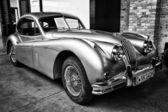 Deporte automóvil jaguar xk140 coupe (blanco y negro) — Foto de Stock