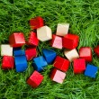 Children's blocks thrown in the grass — Stock Photo