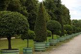 Garden Palace Charlottenburg. Berlin. — Stock Photo