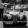 A sports car Jaguar XK120, black and white — Foto de Stock