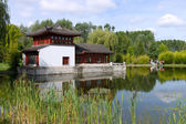 китайская пагода у озера. летний пейзаж. — Стоковое фото