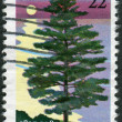A postage stamp printed in the USA, is dedicated to Michigan Statehood sesquicentennial, shows White Pine — 图库照片