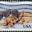 A postage stamp printed in USA, Christmas Issue, shows cat and dog playing in the snow — Stock Photo